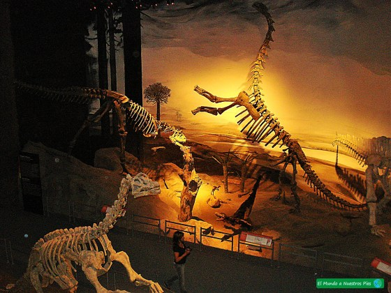 Museo Paleontologico Trelew