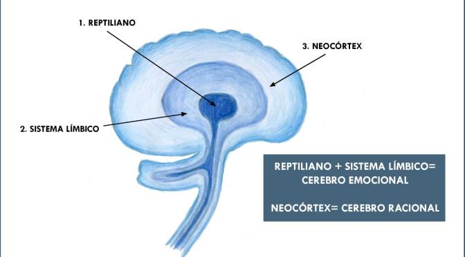 Publicitat dirigida al teu cervell reptilià