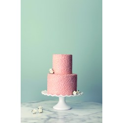 Magnificent Small Wedding Cakes Paris Small Wedding Cakes Publix Small Wedding Cakes Ago Intimate Ceremonies Elope wedding cake Small Wedding Cakes
