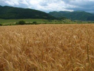 Agricultura Rusia portada