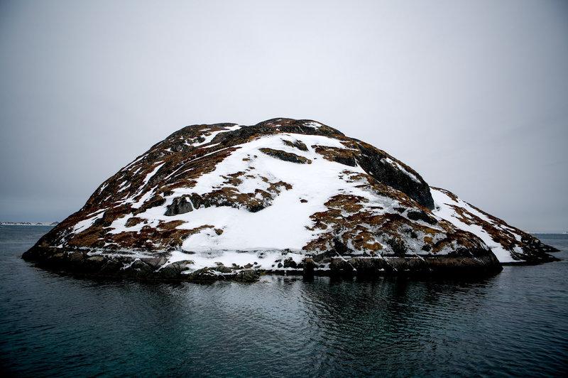 El suicidio del Ártico