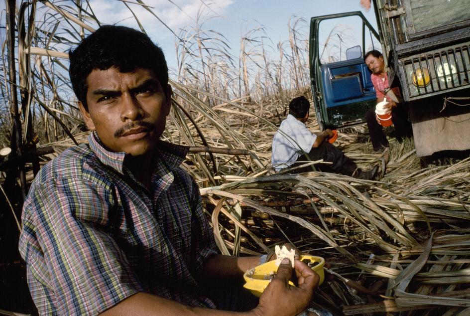 La agricultura en el siglo XXI: un futuro incierto
