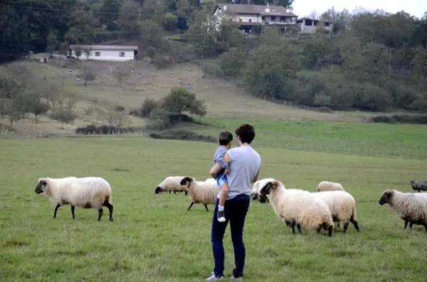 Fotos Goierri - ruta Idiazabal, Vero, Oriol y ovejas