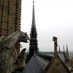Fotos de Notre Dame de Paris, gargola