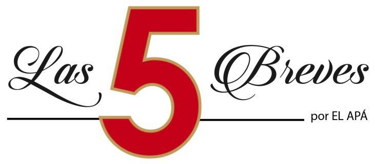 BANNER LAS 5 BREVES-01
