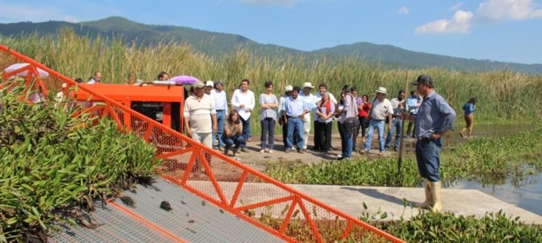 Inician labores de saneamiento en Laguna de Zapotlán