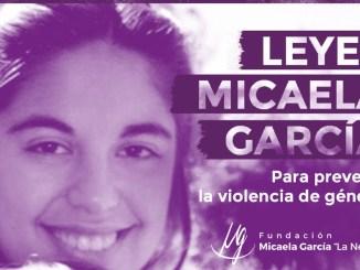 Leyes Micaela