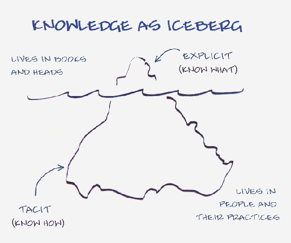 tacit-knowledge-big