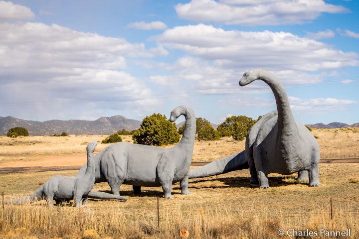 Brontosaurus Family – Santa Fe, NM