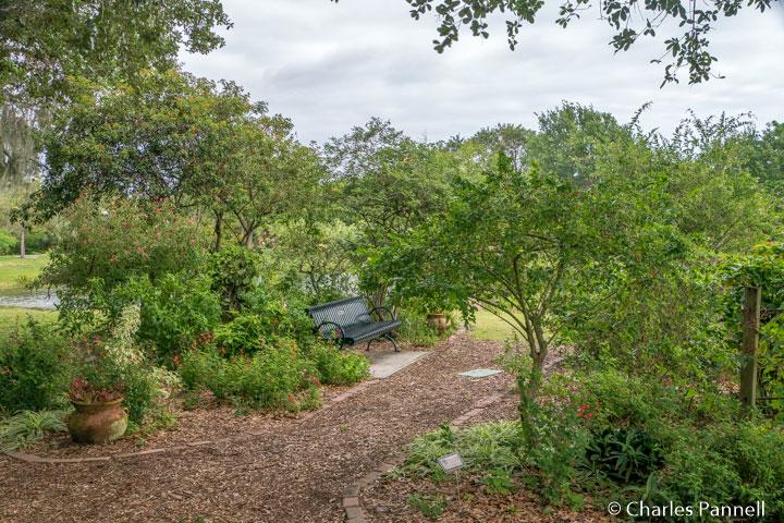 Butterfly garden at Indian RiverSide Park, Florida
