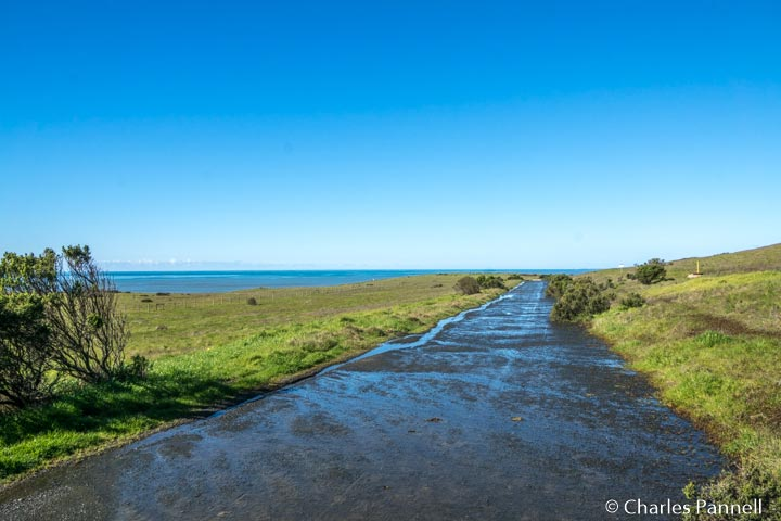 The Marine Terrace Trail at Fiscalani Ranch Preserve