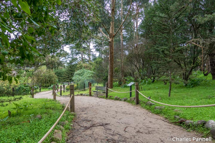 The Monarch Grove Sanctuary in Pacific Grove