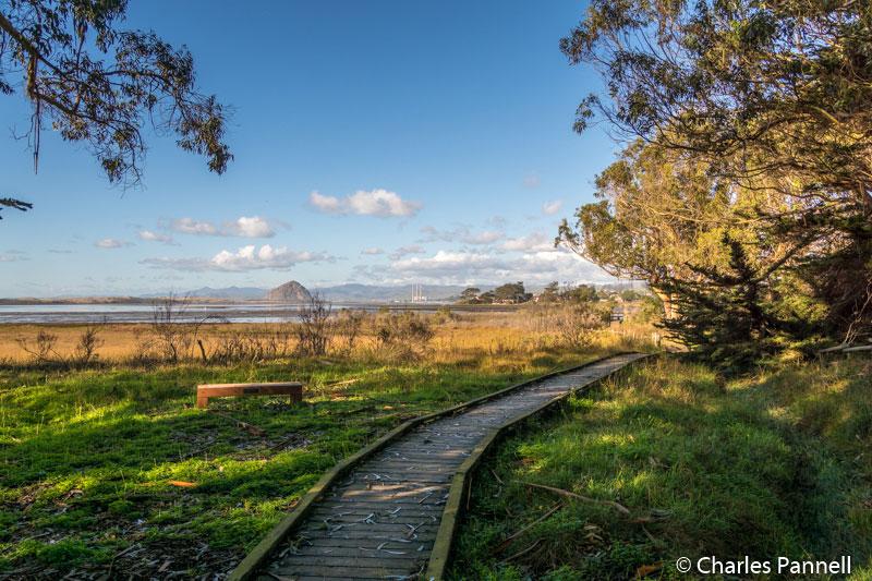 Ramona Avenue trail at Sweet Springs Nature Preserve