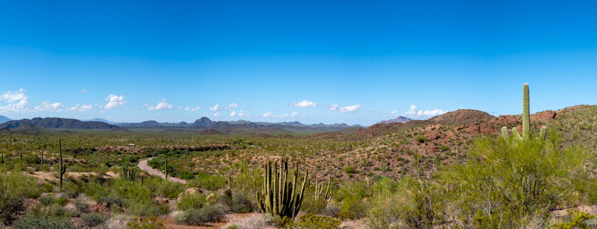 Organ Pipe National Monument, Arizona