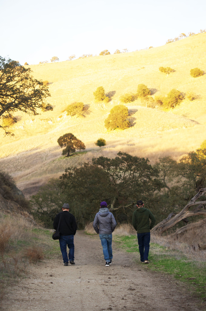 Hiking in the evening in Walnut Creek California