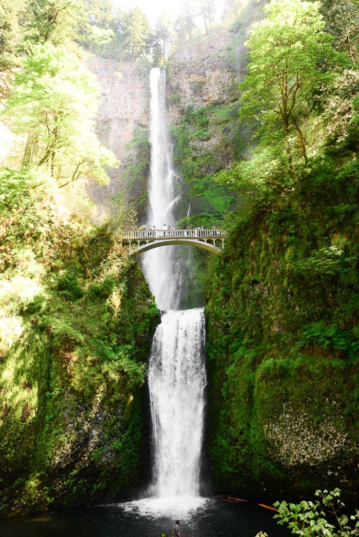 Things to do in Portland - Visit Maltnomah Falls