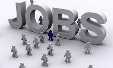 job-search-uae