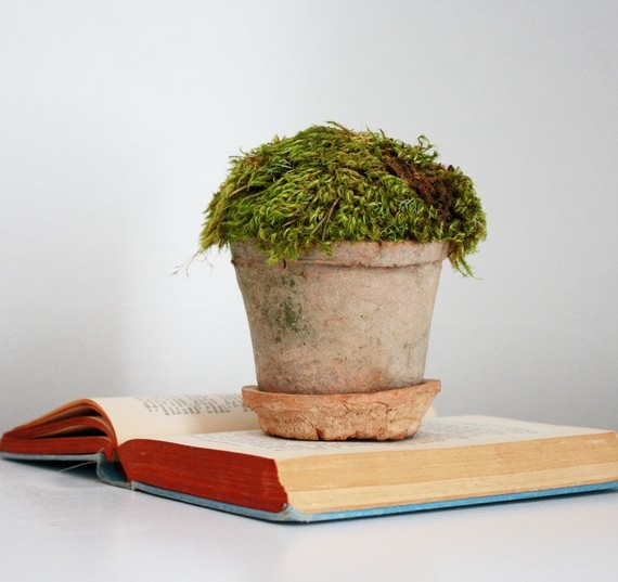 mossy unique wedding centerpieces