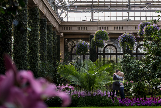 Daniel Fugaciu Photography - Longwood Gardens photography
