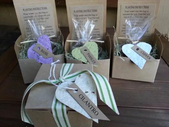 herb garden kits