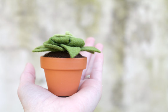 moss felt succulent (by ordinary mommy)