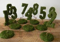 moss-table-numbers-wedding