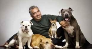 La-gran-fortuna-de-César-Millán-el-encantador-de-perros