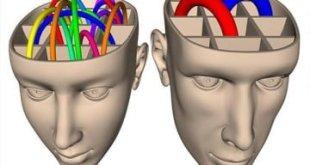 El cerebro emprendedor funciona diferente