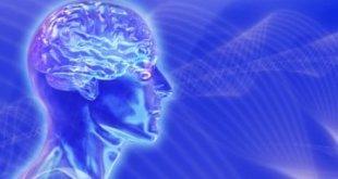El cerebro azul