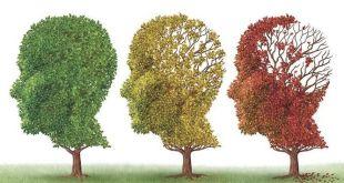 envejicimiento cognitivo