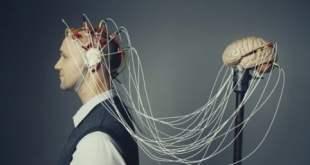 neurociencias aplicadas a la educación