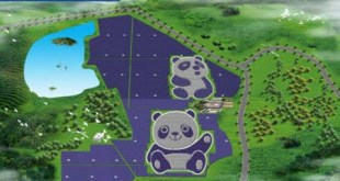 recorte620_granja-solar-panda