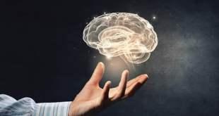 reprogramación neuromotriz