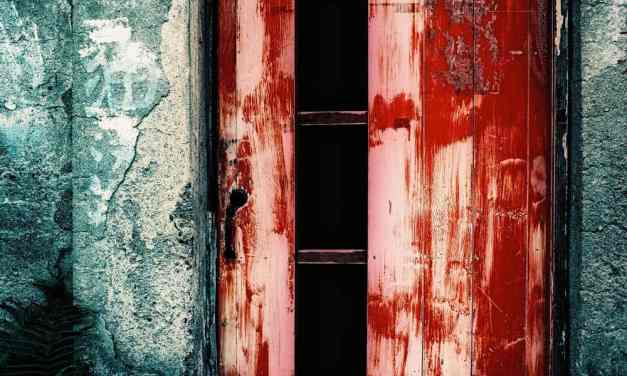 Fade to red – Fuji Velvia 50 – RVP 50 (120)