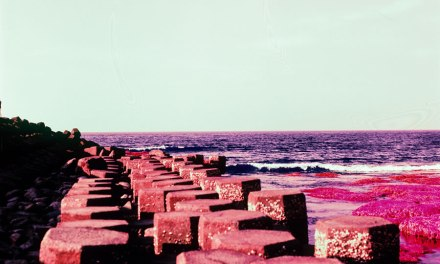 Hexagonal columns – Kodak AEROCHROME III 1443 (120)
