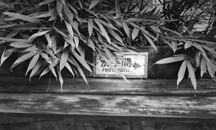 Warning: concealed restroom – Kodak BW400CN (35mm)