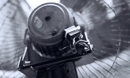 Fan out – Kodak Tri-X 400 (120)
