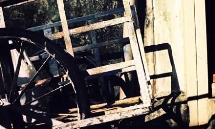 Cart – Kodak EKTACHROME 100VS – E100VS (120)