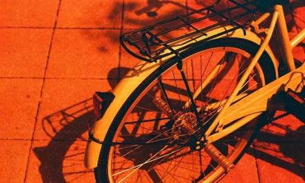 Red or Dead – Kodak Vision3 250D 5207 (35mm)