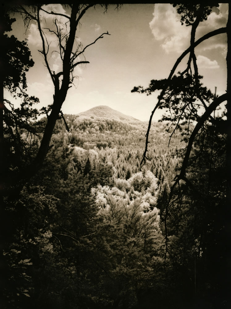 Elevation (darkroom print scan)