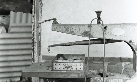 Tivolina – Fomapan R100 (120)