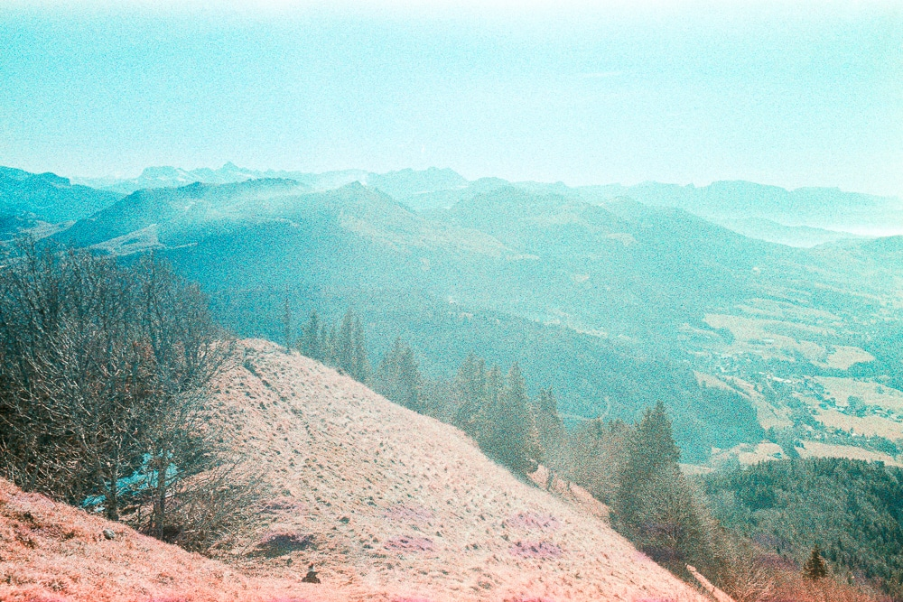 5 Frames With... #08: Rollei CR200 (EI 200 / 35mm / XPRO) by Alexis Analog
