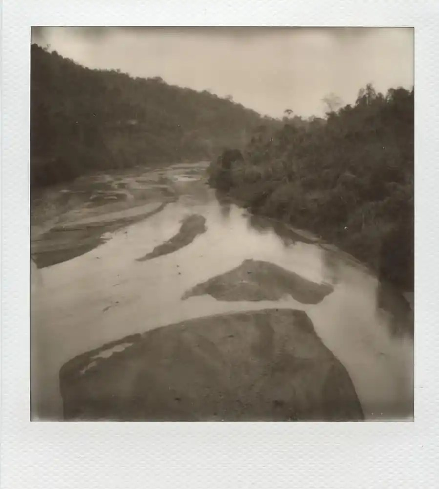"""Untitled"", Taman Negara jungle, Malaysia. Impossible 600 film in Polaroid SX70 (with exposure filter and compensation)."