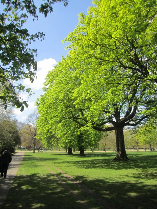 Ena London Tree Park