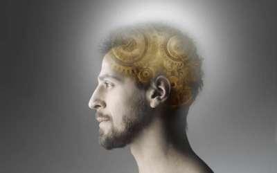 εγκέφαλος νους σκέψη