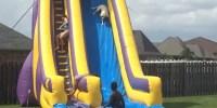 Dog-Enjoys-Sliding-Down-In-Water-Slide