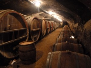 sanvers cellar