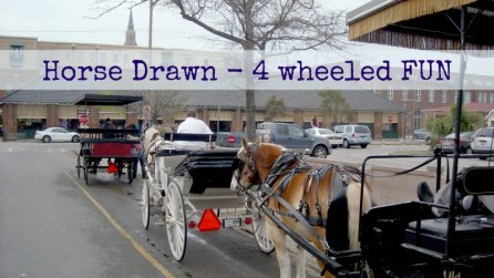 horse drawn four wheeled fun