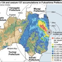 Worms 20 km from Fukushima found contaminated with 20,000 bq/kg of Cesium