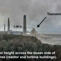"Internal TEPCO document reveals executives knew beefing up tsunami defenses was ""indispensable"""